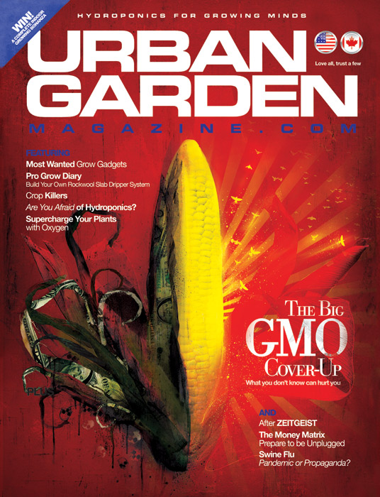 urban garden magazine front cover illustration by danny allison illustration