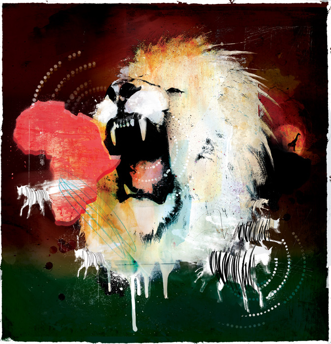 African lion illustration wildlife bbc zebra illustrations danny allison