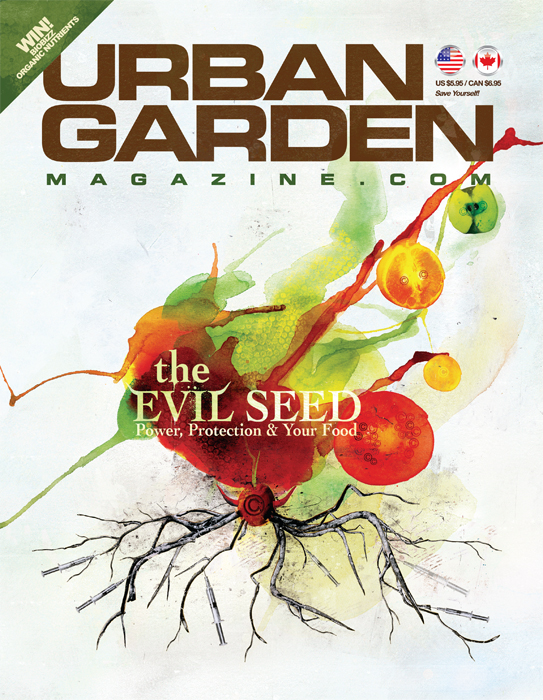 evil seed front cover illustration by danny allison illustration