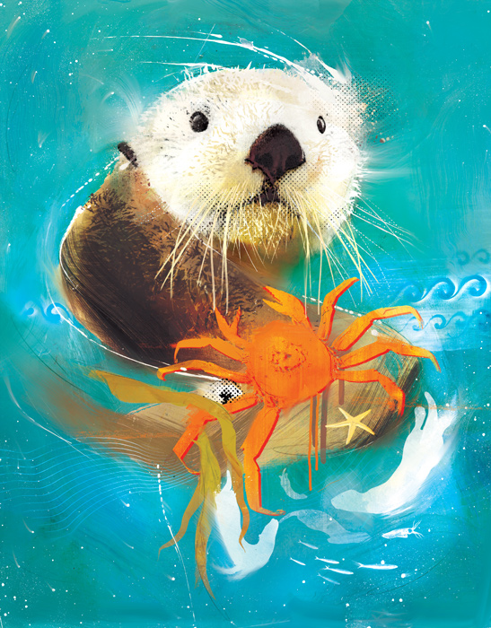 animals-illustration-danny- allison-illustrator-sea-otter