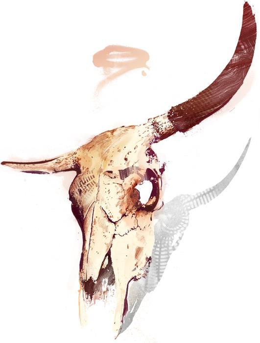 bull-skull-horn-illustration-danny-allison-dannyallison